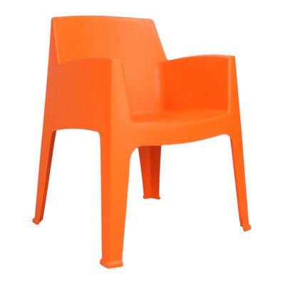 Olivera oranje